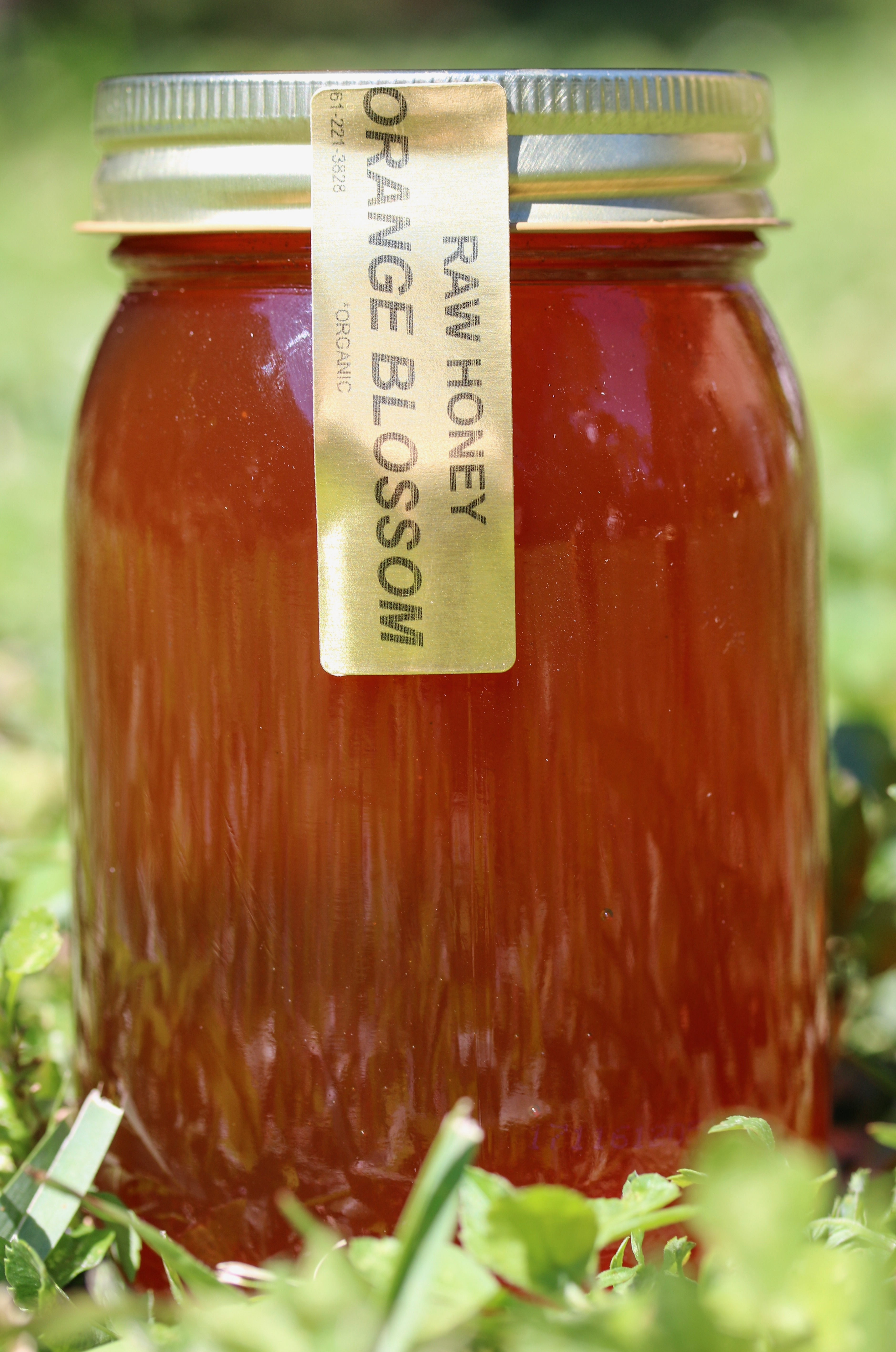 RAW Organic Orange Blossom Honey
